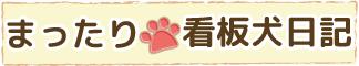 まったり看板犬日記|京都のリフォーム・リノベーション 株式会社 広岡装美