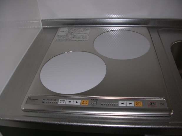 DSCN4261